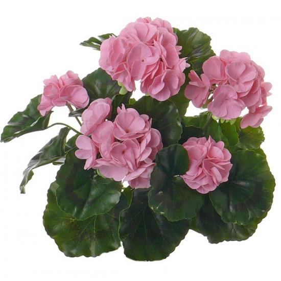 kunst-franse-geranium-roze-35-cm