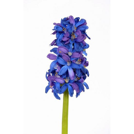 kunst-hyacint-blauw