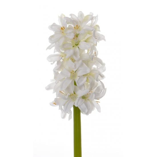 witte-hyacint-bloemen-30-cm